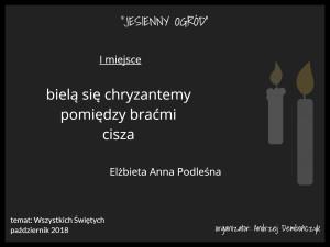 4K I Elżbieta Anna Podleśna
